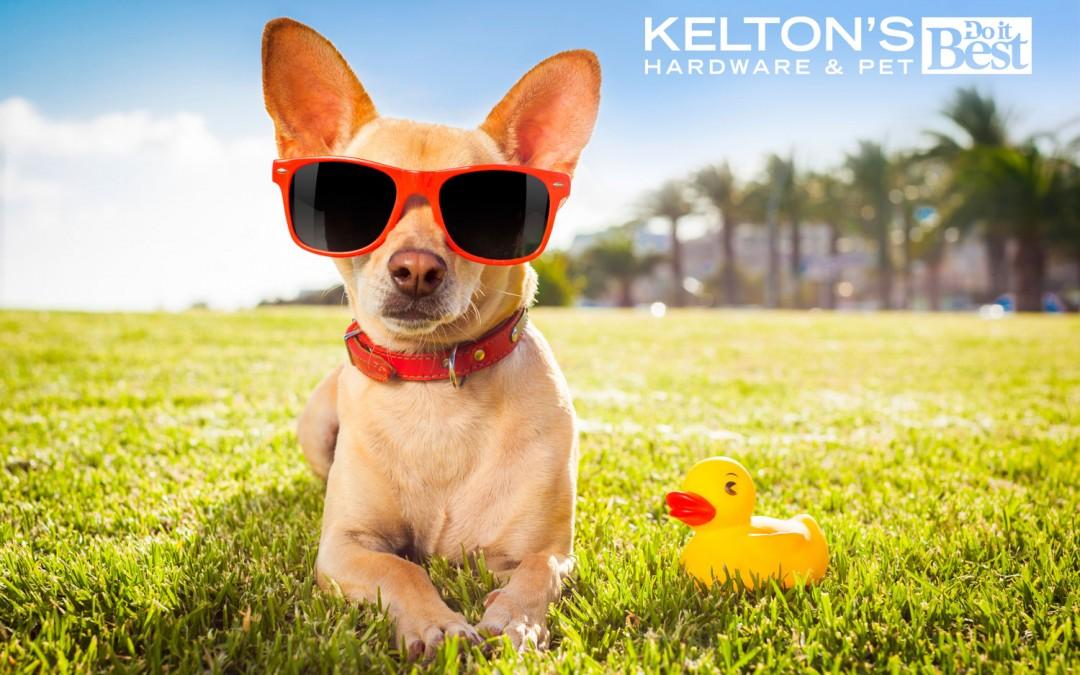 Kelton's Pet Day in May