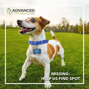 Advanced Lawn Solutions Facebook interactive campaign. Murfreesboro, TN